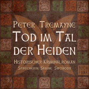 Peter Tremayne - Tod im Tal der Heiden